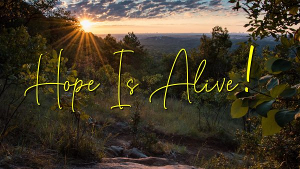 HOPE IS ALIVE: What Christ Did At Easter Image